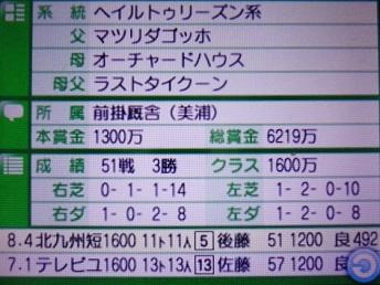 DSC09898.JPG