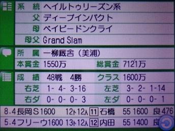 DSC09902.JPG
