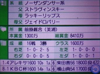 DSC09904.JPG